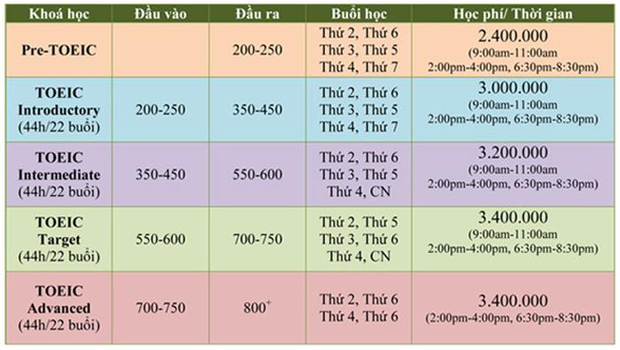 Thông tin các khóa học luyện thi TOEIC